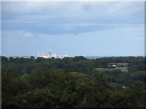 O0671 : The Platin Cement Works viewed from the Hill of Tara by Eric Jones