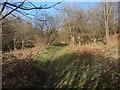 SS8577 : Public footpath in the north of Merthyr Mawr Warren by eswales