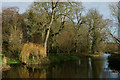 TL4355 : Mill Pond at Grantchester, Cambridgeshire by Peter Trimming