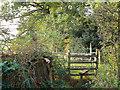 SP0675 : Stump and stile near Blackgreves Farm, Wythall by Robin Stott