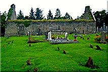 R4460 : Derelict Bunratty Church & Graveyard by Joseph Mischyshyn