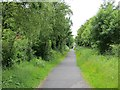 NZ3054 : Consett and Sunderland Railway Path by Richard Webb