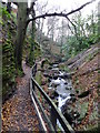 SC4178 : Groudle Glen by Richard Hoare
