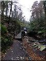 SC4178 : Approaching the water wheel in Groudle Glen by Richard Hoare