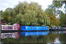 TQ1683 : Narrowboats, Grand Union Canal - Paddington Branch by N Chadwick