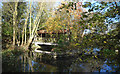 SU4796 : Weir at New Cut Mill by Des Blenkinsopp