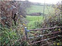 SX8950 : Valley below Brownstone Farm by David Smith