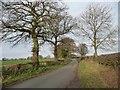 SJ8062 : Moorhead Lane by Christine Johnstone