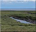 TF4750 : Tidal creek near the Horseshoe by Mat Fascione