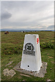 SO1544 : Trig Point Outside  the Begwyns Roundabout by Christine Matthews