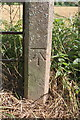SE3495 : Gatepost with benchmark, Mounstrall Lane by Roger Templeman