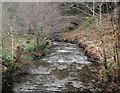 SS9089 : The Afon Garw by Pont-y-rhyl by eswales