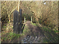 TQ5682 : Entrance to  Running Water Wood by Roger Jones