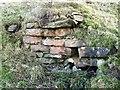 NY9175 : Gunnerton Nick lime kiln - arch (detail) by Mike Quinn