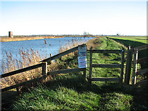 TG3504 : Gate on the floodbank along the River Yare by Evelyn Simak