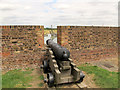 TQ6575 : Tilbury Fort: cannon by Stephen Craven