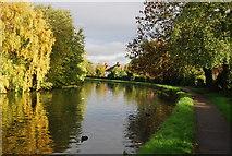 TQ1883 : Grand Union Canal - Paddington Branch by N Chadwick
