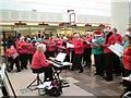 SJ9494 : Yew Tree Singers by Gerald England
