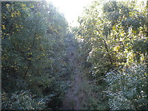 SK5852 : Railway trackbed in Sansom Wood by Richard Vince