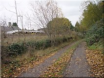ST9897 : Track Bed Approaching Tetbury Branch Bay at Kemble Railway Station by Paul Best