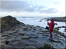 C9444 : Tourist at the Giant's Causeway by Kenneth  Allen
