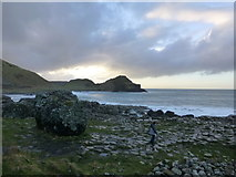 C9444 : Rocky coast at the Giant's Causeway by Kenneth  Allen