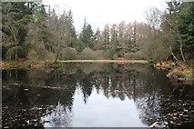 NX4465 : Kirroughtree, Little Bruntis Loch by Billy McCrorie