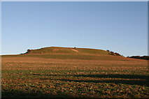 TF2877 : Gaumer Hill from Ings Lane by Chris