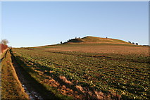 TF2877 : Cultivation Terraces on Gaumer Hill by Chris