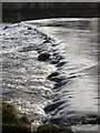 SE0063 : Weir on the Wharfe by Derek Harper