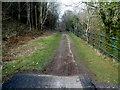 SS7994 : Richard Burton Trail NW of a viaduct, Pontrhydyfen by Jaggery