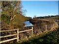 SK9028 : Fencing around the fish pond, west of Stoke Rochford by Christine Johnstone