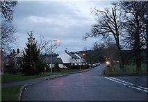 NH5041 : Christmas tree, Kiltarlity by Craig Wallace