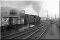 SJ8499 : Coal train heads up Miles Platting bank, 1966 by Robin Webster