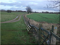 SE3953 : Bridleway off Wetherby Road by JThomas