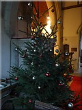 ST9929 : St George, Fovant: festive tree by Basher Eyre