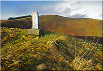 NT0612 : Covenanter's memorial, Devil's Beef Tub by Ian Taylor