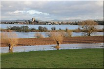 SO8832 : Tewkesbury Abbey viewed across the flooded Ham by Philip Halling