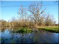 SU6375 : Path under Water by Des Blenkinsopp