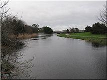J3731 : The swollen Shimna in Island Park, Newcastle by Eric Jones
