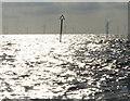TF5763 : Lynn Offshore Windfarm by Mat Fascione