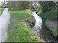 TQ4573 : River Shuttle in Hollyoak Wood Park by Marathon