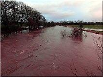 NY0884 : The Kinnel Water in flood by Lynne Kirton