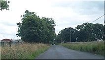 N0720 : View south along the Cloghan Road at Drishogue by Eric Jones