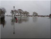SZ1592 : Christchurch: Quomps is underwater by Chris Downer
