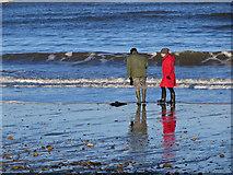 NZ8612 : January walk by Pauline E