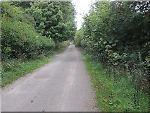TQ1913 : Route of Disused Railway by Peter Holmes