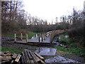 SJ7661 : New walkway in Sandbach Park by Stephen Craven