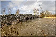 ST9102 : Jan 2014: flooding at Crawford Bridge, Spetisbury (1) by Mike Searle