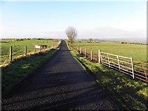 H5572 : Gap Road, Bracky by Kenneth  Allen